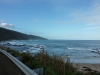 Second random roadside stop between Lorne and Apollo Bay